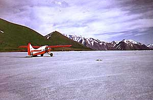 DHC-3 Otter on Ice Field